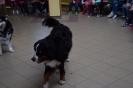 Bezpieczeństwo w czasie spotkania z psem